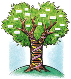 genealogy_tree