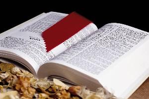 bible-open3