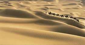 40-anos-en-el-desierto