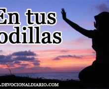 En tus rodillas – Brendaliz Avilés