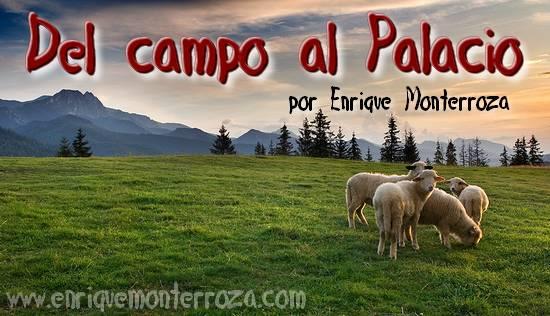 Del Campo al Palacio – Enrique Monterroza