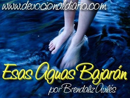 Esas aguas bajarán – Brendaliz Avilés