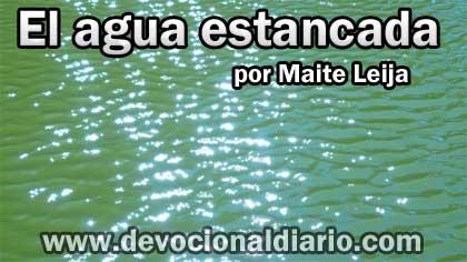 El agua estancada – Maite Leija