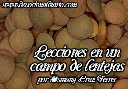 Lecciones en un campo de lentejas – Osmany Cruz Ferrer