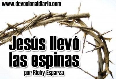 Jesus-llevo-las-espinas
