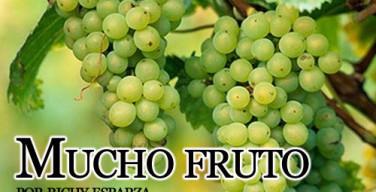 mucho-fruto