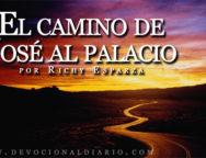 El-camino-de-Jose-al-palacio---Richy-Esparza