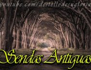 Audio Devocional – Sendas Antiguas – Enrique Monterroza
