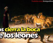 Video Devocional – Dios cierra la boca de los leones