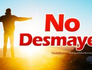 Video Devocional – No desmayes